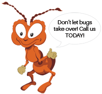 PestNow is here to rid your home of pests!