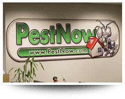 Join our team at PestNow!